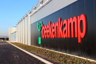 BEEKENKAMP | NL